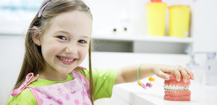 a young girl playing with model of teeth with braces